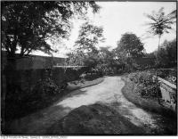 Historic photo from 1921 - Garden and path, looking east on the south side of Woodlawn in Summerhill