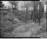 Historic photo from 1965 - Avenue Road ravine - north of Lawrence (Douglas Greenbelt) in Bedford Park