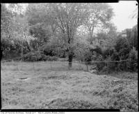 Historic photo from 1960 - 4 photos of 408 Fairlawn Avenue ravine near Brookdale park in Ledbury Park