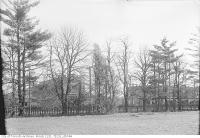 Historic photo from Wednesday, March 15, 1922 - Looking to Yonge street from the Ellis Property in Bedford Park in Bedford Park