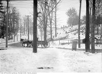 Historic photo from Friday, January 23, 1914 - Trees being cut on Christie Street north from Davenport Road in Davenport