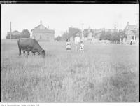 Historic photo from 1911 - Oulcotts Temperance Hotel just beyond Mr. D. D. Reids field at Montgomery Avenue in North Toronto