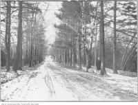 Historic photo from 1912 - Avenue Road from St. Clair Avenue West, looking north from Lonsdale to UCC in Forest Hill