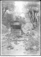 Historic photo from 1907 - Women standing by creek and bridge near Poplar Plains Road in South Hill