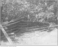 Historic photo from 1910 - One of the last snake fence or split-rail fences in Toronto - Gwynne estate in Parkdale