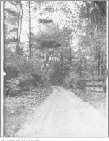 Historic photo from 1909 - Rusholme Road, near Dundas in Dufferin Grove
