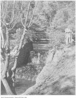 Historic photo from 1907 - Creek running under Poplar Plains Road in South Hill