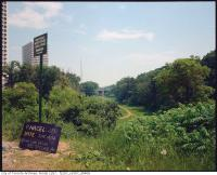 Historic photo from Friday, June 14, 1974 - Ravine land, St. Clair Avenue West, south side  looking southeast in Forest Hill