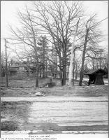 Historic photo from Wednesday, November 22, 1911 - Second Mashquoteh? (1890s to 1956) St. Clair Avenue widening - trees, east of Avenue Road in Deer Park