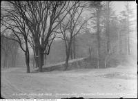 Historic photo from Saturday, April 24, 1915 - Rosedale Section - Rosedale Ravine Drive cemetery property (St. James Cemetery) in Rosedale
