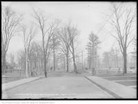 Historic photo from Friday, February 14, 1913 - Before stone gates at Dufferin Grove South from Gladstone Avenue in Dufferin Grove