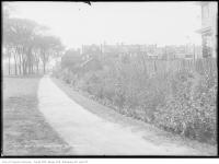 Historic photo from Tuesday, September 9, 1913 - Dufferin Grove park and houses over the fence in Dufferin Grove