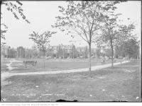 Historic photo from Thursday, October 9, 1913 - Trees and paths of Vermont Square in Seaton Village
