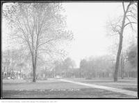 Historic photo from Tuesday, October 14, 1913 - Trees and a fountain in Bellevue Square in Kensington Market