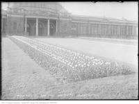 Historic photo from Tuesday, May 19, 1914 - Exhibition Park - flowerbeds in front of the Horticultural Building in CNE