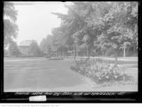 Historic photo from Tuesday, August 26, 1930 - Flower beds on west side of Havelock Street in Dufferin Grove