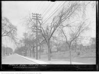 Historic photo from Thursday, April 26, 1934 - State of the trees in Dufferin Grove - April in Dufferin Grove