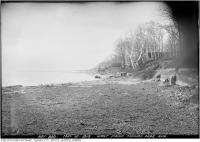 Historic photo from Monday, May 12, 1919 - Lake Ontario shoreline west from Munro Park Ave. -  Erosion of the lakeshore in The Beaches