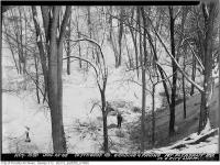 Historic photo from Tuesday, January 22, 1946 - Blythwood Road grading and paving - looking down into the ravine in Sherwood Park