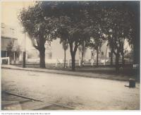 Historic photo from Thursday, October 6, 1904 - Looking north at the Grand Trunk Railway crossing Dunn Avenue in Parkdale