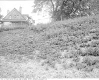 Historic photo from Tuesday, September 29, 1953 - Ground cover north of Rosedale Subway Station in Rosedale