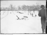 Historic photo from 1910 - Toboggan runs built in the park in High Park