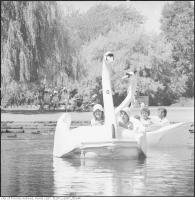Historic photo from 1970 - Kids having fun on the swan ride at Centreville in Toronto Island